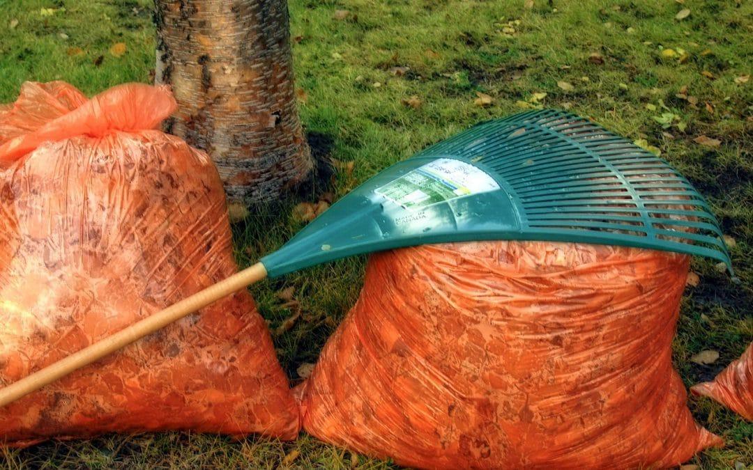 Autumn Home Maintenance Guide
